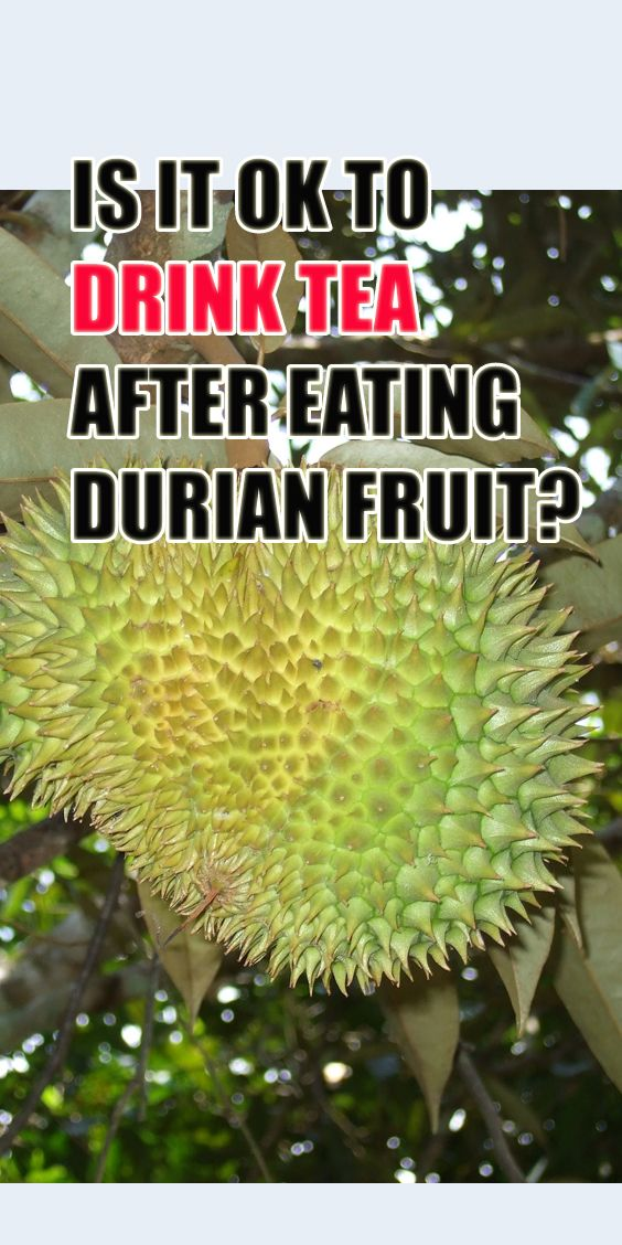 Is It Ok To Drink Tea After Eating Durian Fruit Drinking Tea Durian Fruit