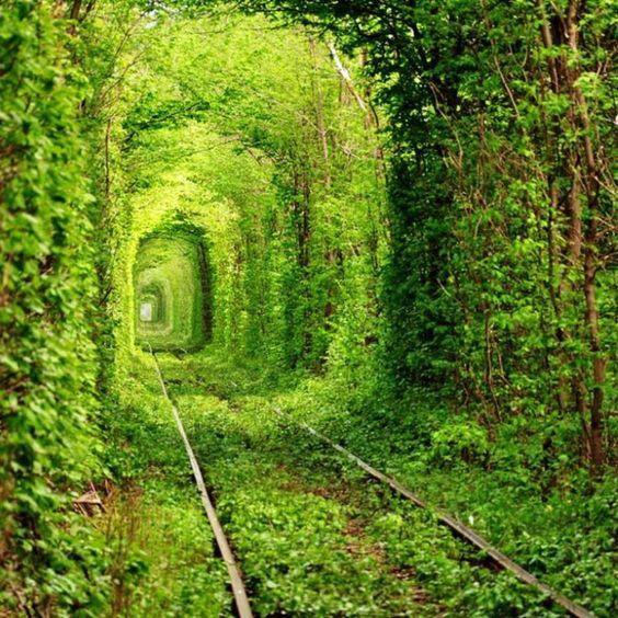 Tunnel of Love, Ukraine  http://www.playbull.com/wp-content/uploads/2013/06/Tunnel-Of-Love-Kleven-Ukraine.jpg