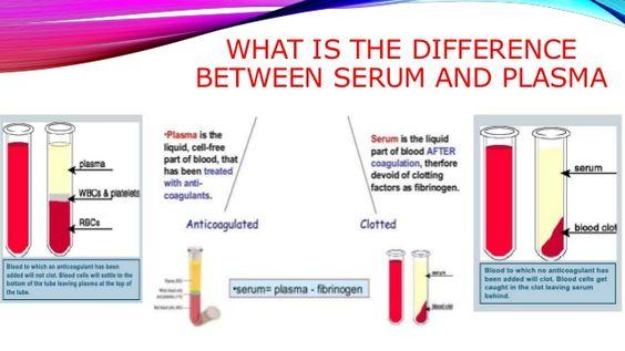 plasma vs serum