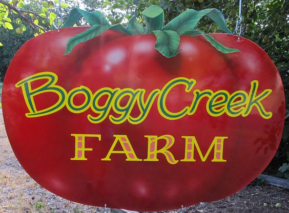 Boggy Creek Farm - organic urban farm in Austin