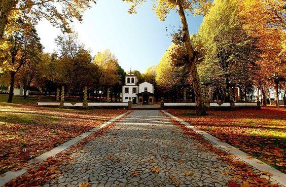 Parque da Ponte em Braga, entre outras imagens deDomingos Ribeiro,