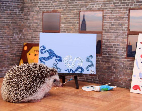 The Adventures Of Humphrey J Hedgehog   Bored Panda