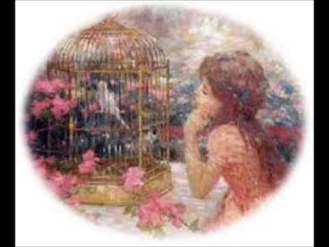 A menina e o pássaro encantado
