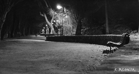 Caminho - Parque Cidade Porto