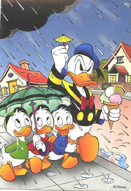 Disney - Donald in the rain:  According to the Disney canon, particularly in the 1942 short, Donald Gets Drafted, Donald's full name is Donald Fauntleroy Duck. Donald's birthday is officially recognized as June 9, 1934, the day of his debut film.