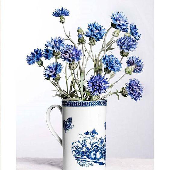 from @vladimir.kanevsky--Cornflower. Porcelain, glazes.  #porcelain #softpasteporcelain #porcelainflowers #decor #vladimircollection #blueandwhite #buchelorbuttons