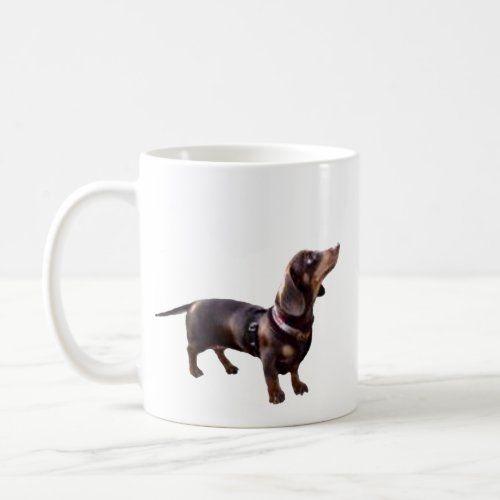 Hot Chocolate Dachshund Coffee Mug Zazzle Com Chocolate Dachshund Hot Chocolate Dachshund