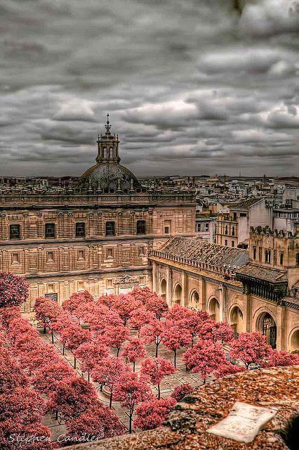 Catedral de Sevilha, Espanha. A Catedral de Sevilha, também conhecida como Catedral de Santa Maria da Sede, é a maior da Espanha, e a terceira maior do mundo, atrás da Basílica de São Pedro, no Vaticano, e da Basílica de Nossa Senhora Aparecida, em Aparecida. (Wikipédia)
