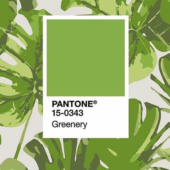 A PANTONE anunciou a cor do ano 2017: Greenery 15-0343. Um tom refrescante e revigorante, símbolo de novos começos.  Adoramos! E você, o que achou?  #pantone #coloroftheyear2017 #greenery: