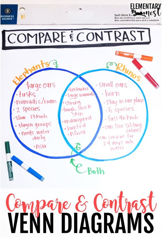 Venn diagram anchor chart for compare and contrast