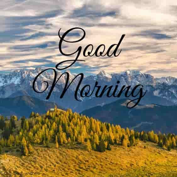 150 Fresh Beautiful Good Morning Images With Nature With Images Good Morning Images Good Morning Photos Latest Good Morning Images