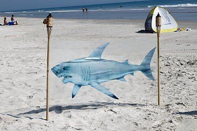 shark party, shark cling with tiki torches at the beach