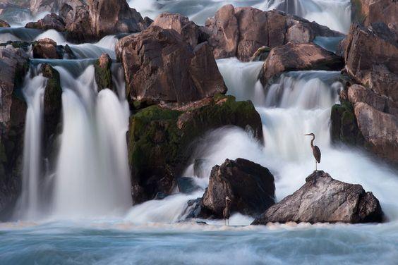 """""""Great Falls Guardian"""", photo by Matt Hansen"""