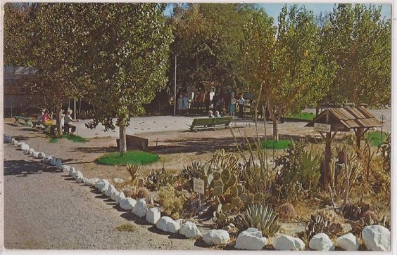 Anaheim CA Postcard TRAILERLAND PARK W Airstream Trailers Map 1976 Cancel