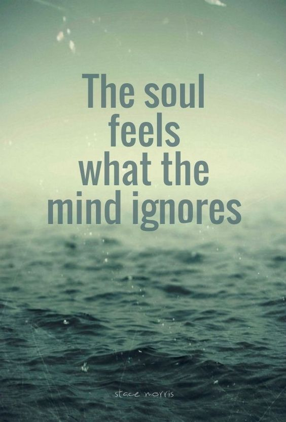 The Soul Feels What The Mind Ignores Life Quotes Quotes Quote Life Inspirational Quotes Soul Quotes And Sayings Li Life Quotes Soul Quotes Inspirational Quotes