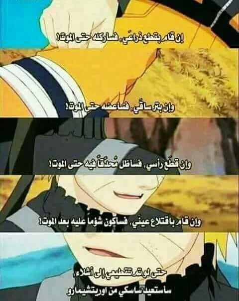 Pin On Funny Arabic Quotes