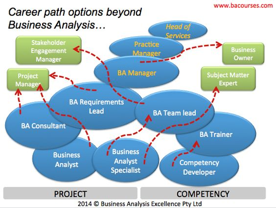 Business Analysis Career Progression Options - this picture - business analysis