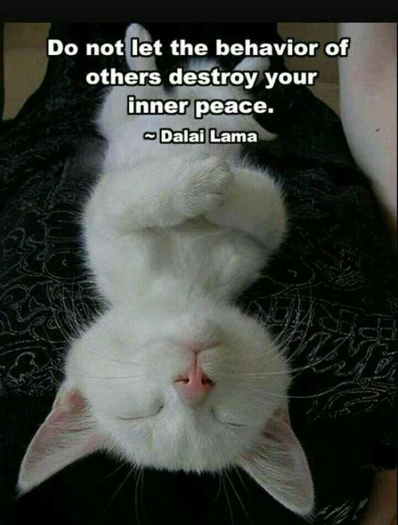 Do not let the behavior of others destroy your inner peace.   #quote by  ~ Dalai Lama