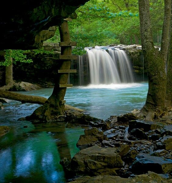 Swimming and water on pinterest for Ozark national forest cabins