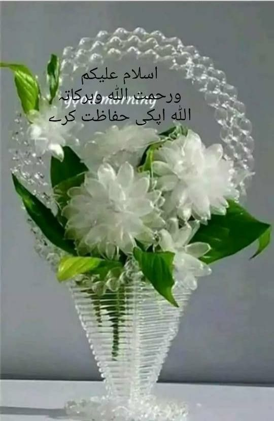 Pin By Javed Akhtar On Good Morning Urdu Beautiful Morning Messages Good Morning Wishes Quotes Good Morning Flowers