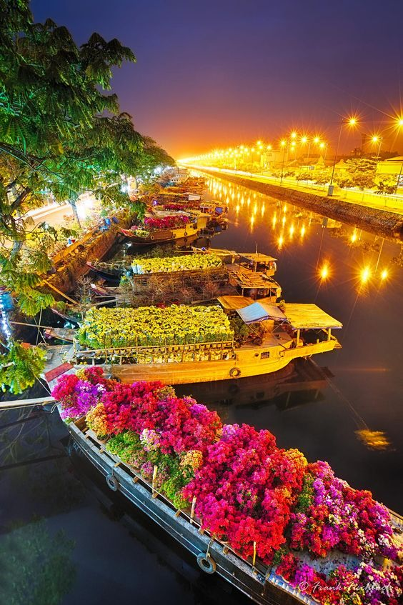 Taken beginning of this year at Saigon Flower Market before sunset. The flowers will be sold for the Vietnamese New Year festival Tet.  The artifical light of the street lights drove me crazy while post-processing the pictures - they sucessfully destroed all colors. The light of the river is still not great, but the flowers look now okay in my opinion....