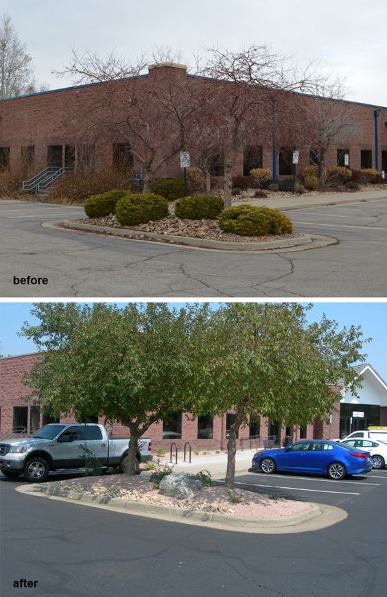 Before and after - major site landscape renovation for this outdated and overgrown parking lot area