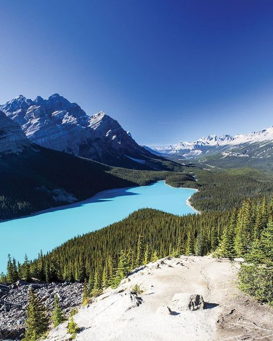 Theres no substitute for experiencing the full glory of #Banff firsthand  from pristine mountain air to the eerily beautiful green waters of the parks glacial lakes. Tag the person youd like to join you in the Canadian Rockies then book a guided hike on TripAdvisor!