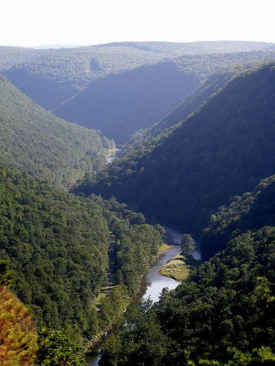 grand gorge single parents Grand gorge is a hamlet in the town of roxbury, delaware county, new york, united statesalthough it is unincorporated, grand gorge has a post office, with the zip code of 12434.