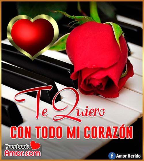Imágenes De Rosa Rojas Con Frase De Amor Imágenes Bonitas