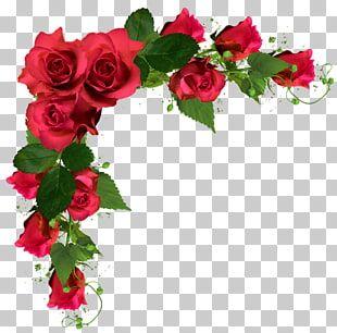 Rose Flower Bouquet Wedding Flowers Red Roses Frame Illustration Png Clipart Flower Png Images Flower Bouquet Png Blue Flower Png