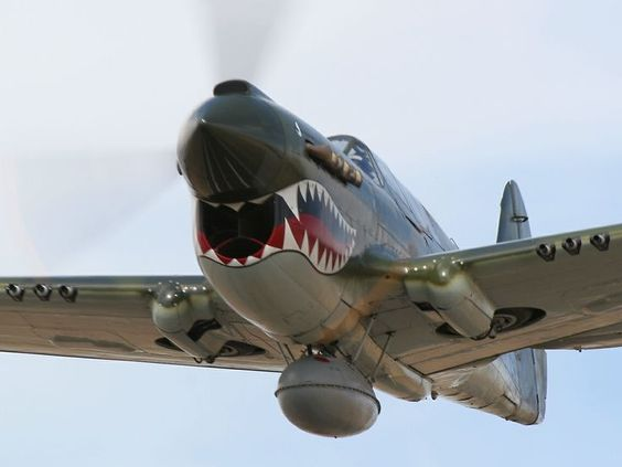 P-40 Warhawk #Flying #Tigers