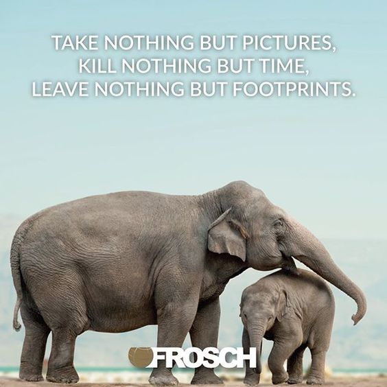 """""""Take nothing but pictures, kill nothing but time, leave nothing but footprints.""""—John Kay"""