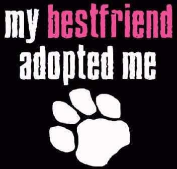 My best friend adopted ME!