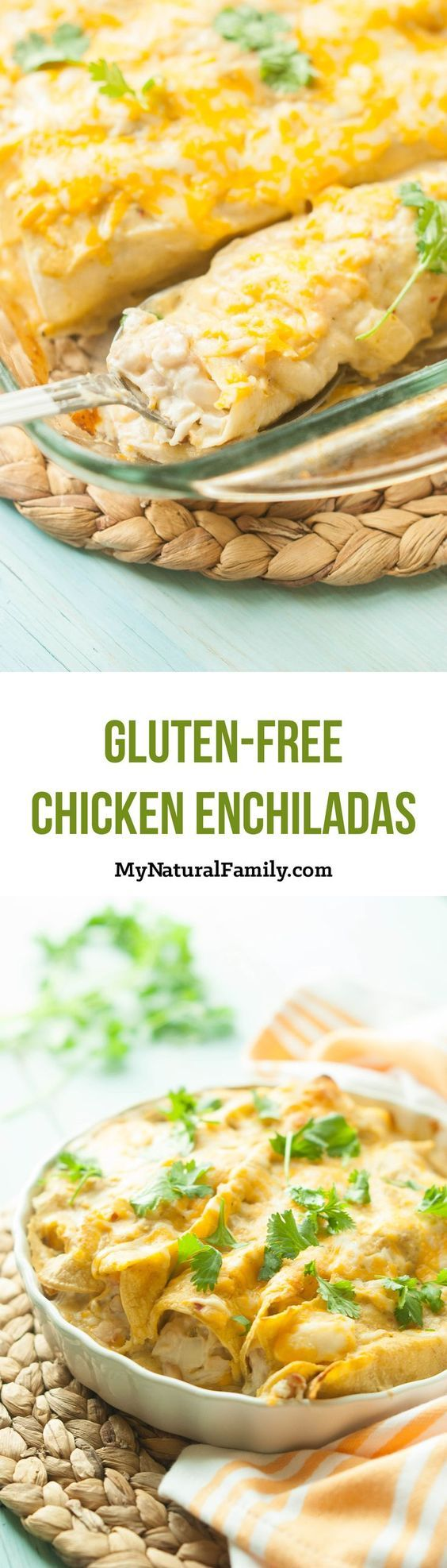 These gluten free chicken enchiladas are hearty, super flavorful, and are topped with an easy, gluten free sauce.