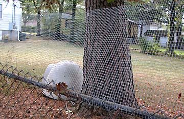 Unchain Your Dog Org Extend Height Of Fence Make Fence