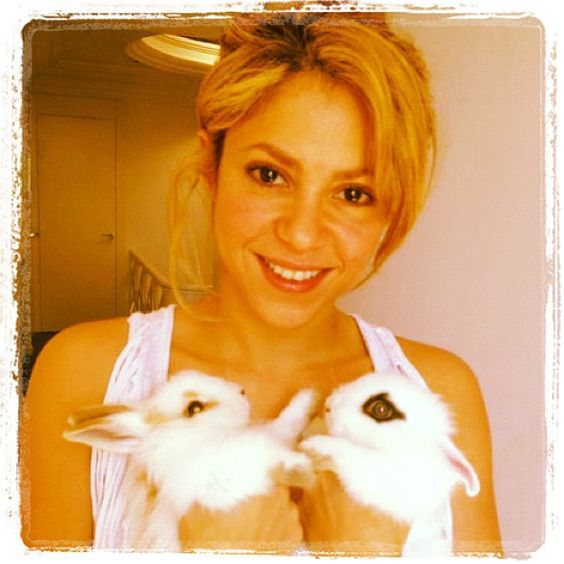 """""""Happy Easter from my easter bunnies! / Felices Pascuas de parte de mis conejitos de pascua! -Shak"""""""