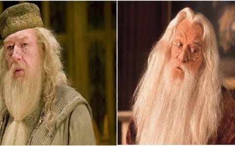Pin By Craig Mckenzie On Movie Stars Michael Gambon Richard Harris Dumbledore