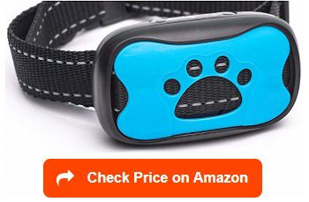 The Best Pinch Collars For Dogs Bark Collar Reviews Best Bark