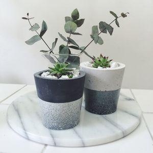 Cosmic Speckle Cement Pots - gardening