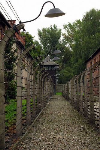 """I've wanted to visit Auschwitz Birkenau in Poland since reading """"Night"""" in high school"""