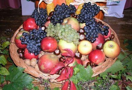 Ein Korb voller frischen frbigen Früchte - Trauben, Äpfel, Nüsse und Kastanien.