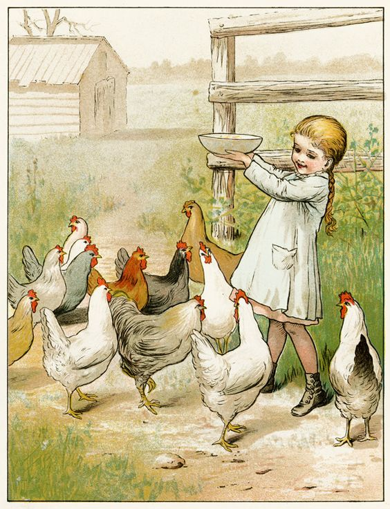 Vintage children's book illustration of a young girl feeding chickens.: