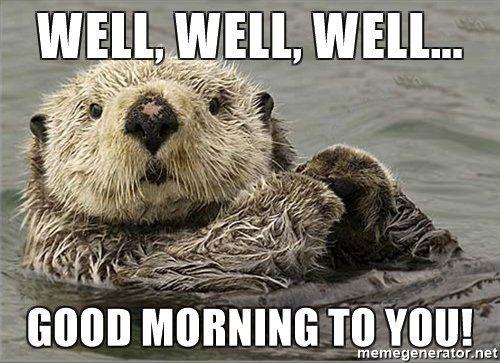 80 Good Morning Memes To Kickstart Your Day Otters Sea Otter Otter Love