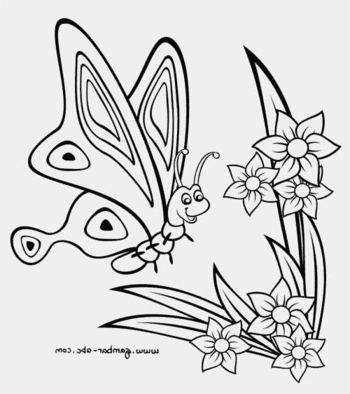 Menakjubkan 30 Wallpaper Bunga Kupu Gambar Kupu Kupu Hitam Putih Keren Taman Kupu Kupu Bunga Download Wallpaper Kupu Kupu Da Lukisan Wallpaper Bunga Mural