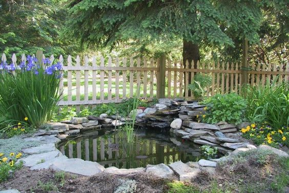 Pond ideas stuff for my yard pinterest ponds backyard ponds and backyards - Corner pond ideas ...