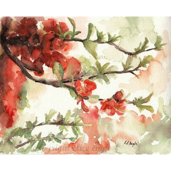 ORIGINAL Watercolor Blossoms Painting, Coral and Green,Branch 8x10 (150 BRL) ❤ liked on Polyvore featuring home, home decor, wall art, art, backgrounds, watercolor flower paintings, green home decor, branch wall art, coral wall art and blossom wall art