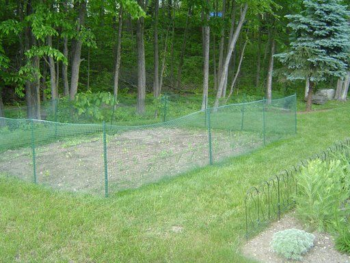 Elegant Best 25+ Plastic Garden Fencing Ideas On Pinterest | Chicken Fence, How To  Plant Bamboo And Bamboo Privacy Fence