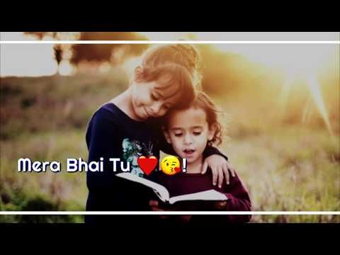Mera Bhai Tu Meri Jaan Hai New Whatsapp Status Video