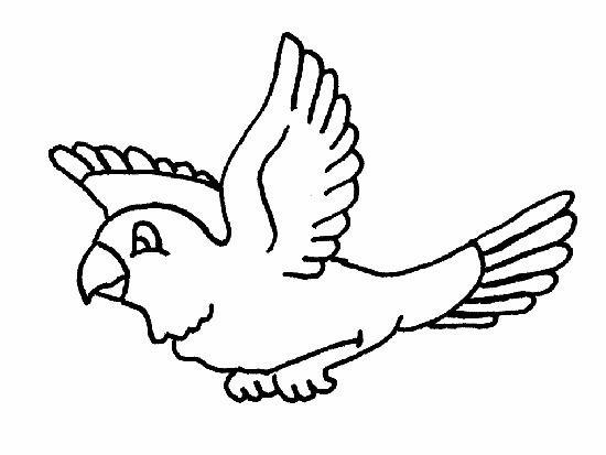 Dibujos Pajaros Para Colorear Imprimir Bird Drawings Birds Flying Coloring Pages