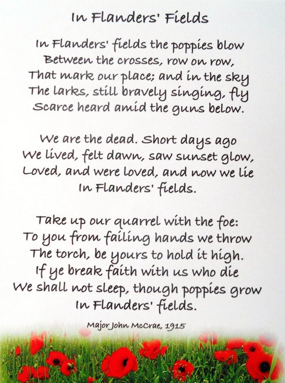 memorial day poem poppies